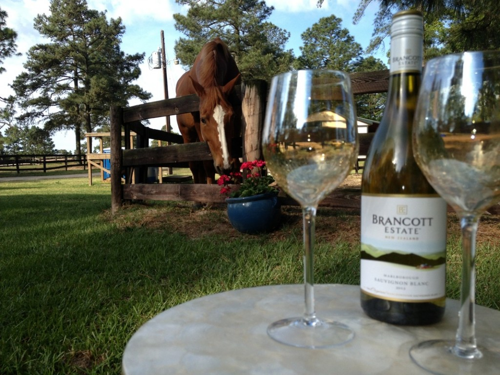 tanglewood-farms-horse-wine-unique-airbnb