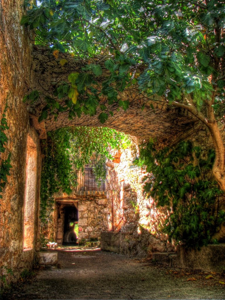 abandoned villa in malo grablje